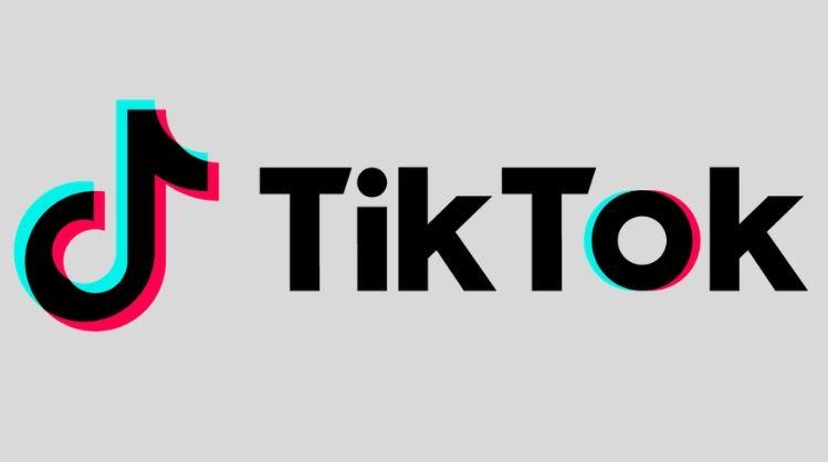 Afbeeldingsresultaat voor tik tok miljoen gebruikers in Nederland