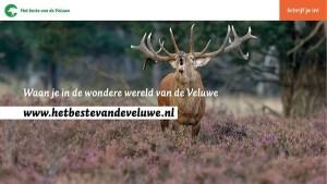 Banner Het beste van de Veluwe
