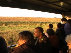 Staatsbosbeheer excursie Oostvaardersplasssen (De Nieuwe Wildernis)