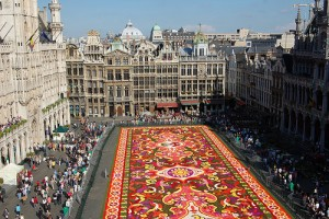 flowercarpet-brussel