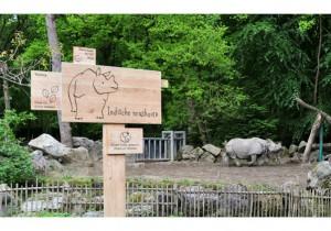Dierenpark Amersfoort (informatie met pictogrammen)
