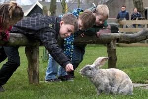 kinderboerderijen weekend