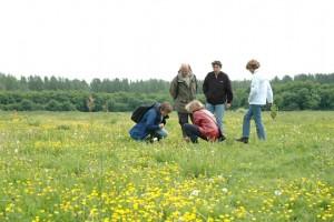 natuurexcursie-IVN-Nieuwegein