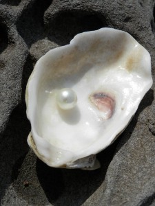oester2