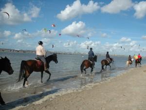 De Nederlandse kust bij Hoek van Holland