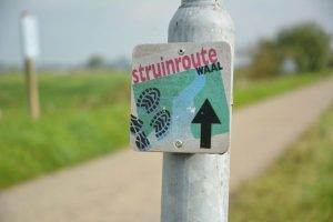 struinroute
