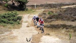 Veluwe geliefd (recreatief) fietsgebied
