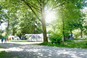 foto regio Noord Veluwe