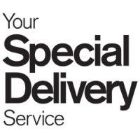 YSDS  logo